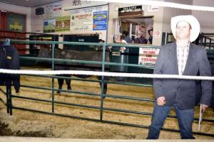 jacket-bull & Wade McNolt